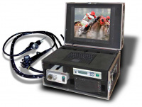 Video Horse Gastroscopy Complete System